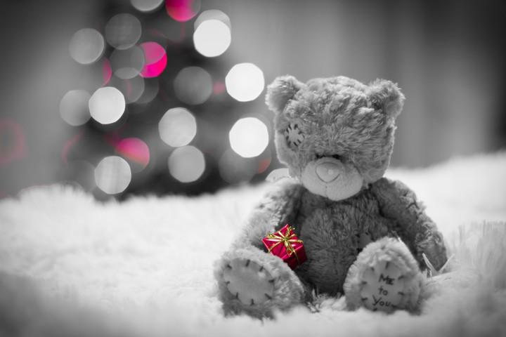 bear-bear-gift-bokeh-fur-sad
